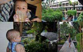 Phuket June 20101