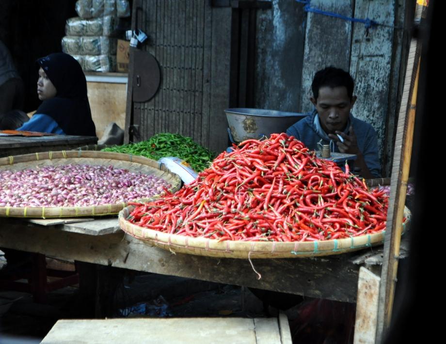 {WonderfulIndonesia} Bogor Kampung Life inStills