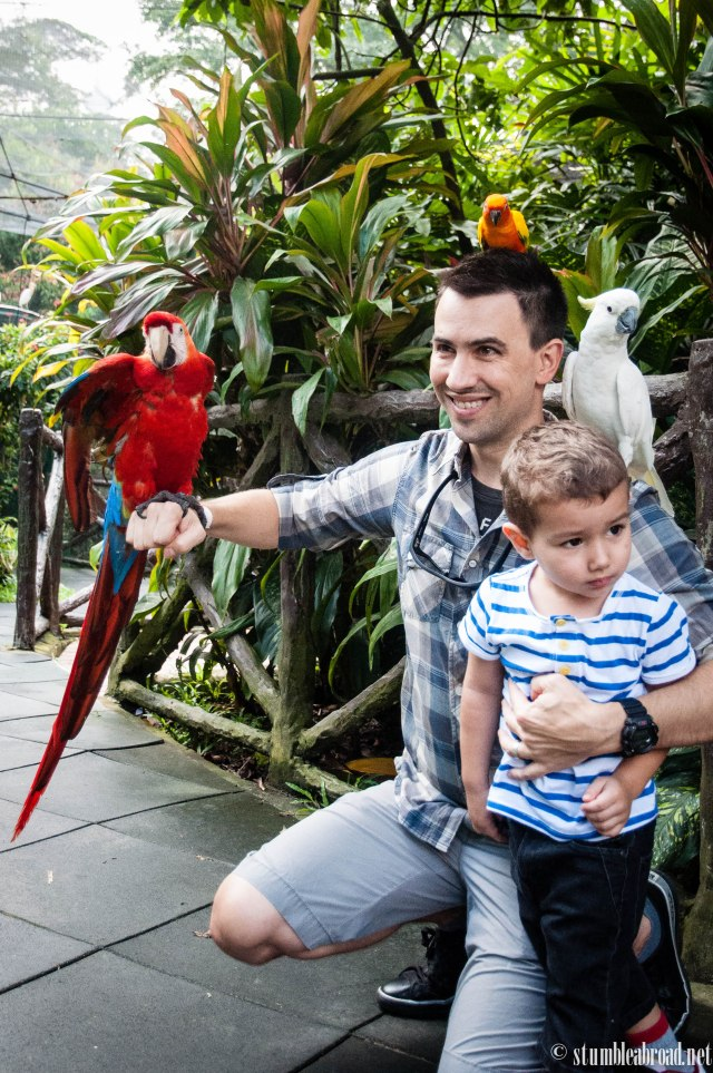 Holding the birds. Evan wasn't too sure he was into this.