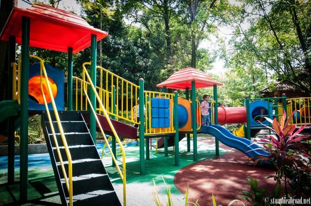 We found a playground!