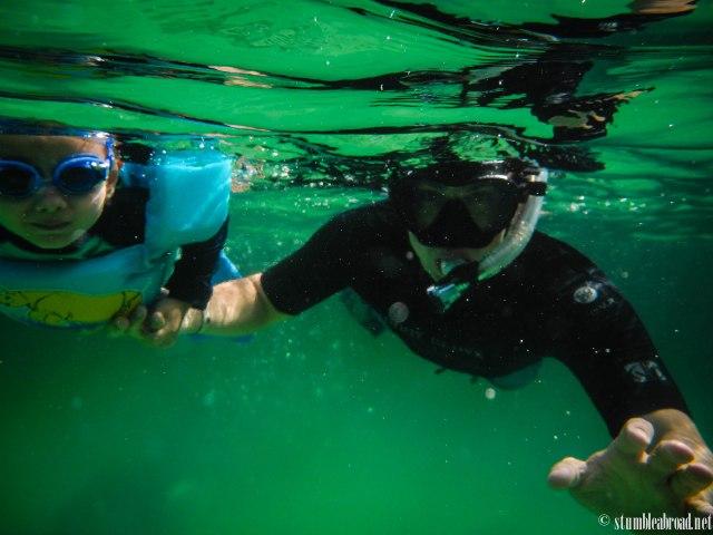 Snorkeled in Akumal