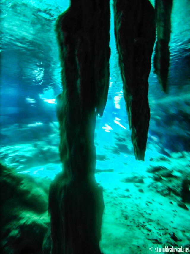 Cenotes are full of stalagmites and stalagtites